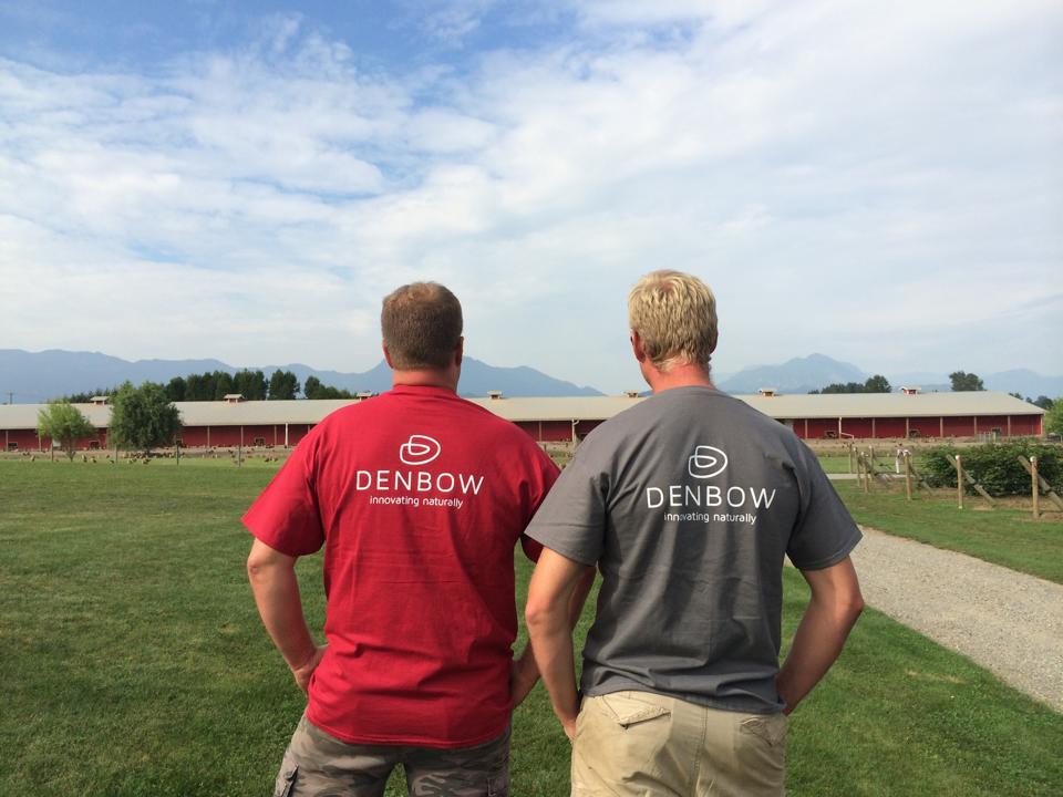 Denbow tshirts