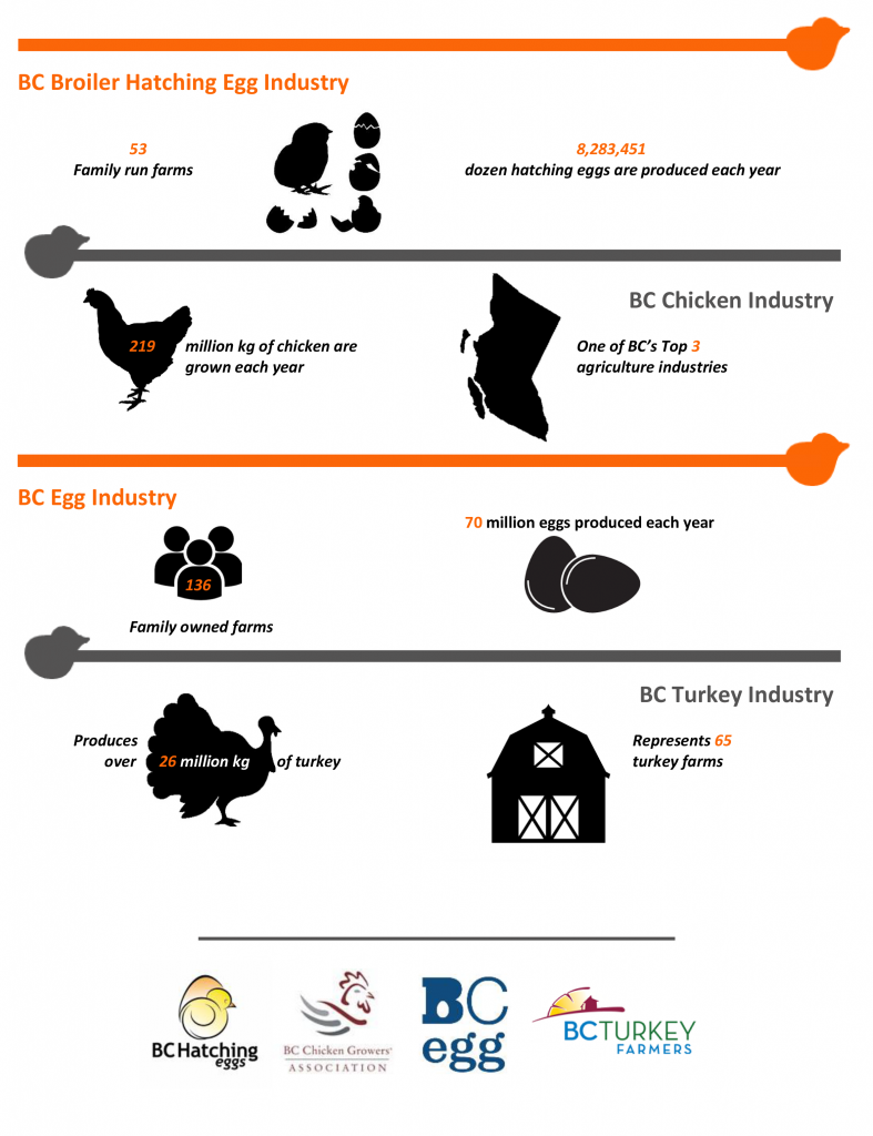 Poultry Industry stats