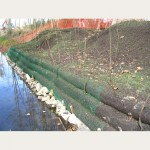 Streambank Restoration - Stokes Pit, Surrey  (1)