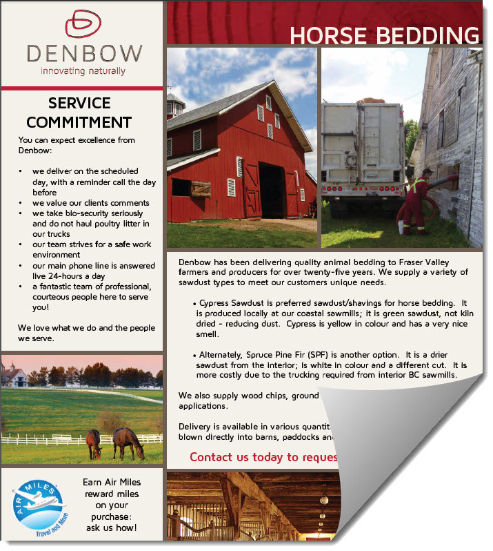 horse bedding one pager