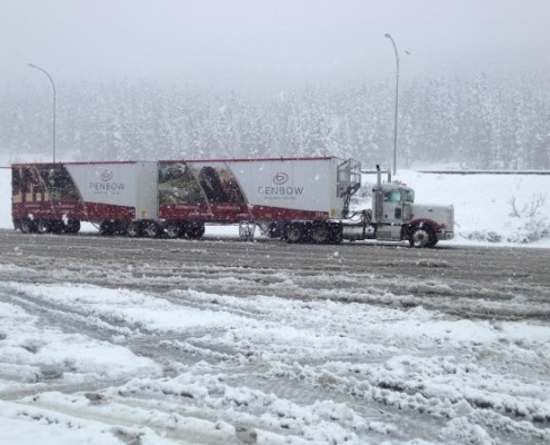 Denbow Winter Driving Safety - Transport truck driving in snow