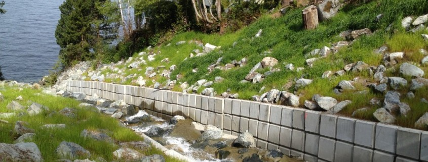 water abatement project
