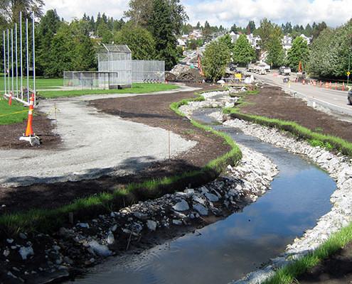 Terraseed a streambed for protection of soil erosion