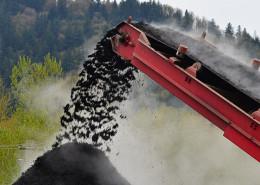 manufacturing coloured mulch