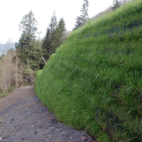 Cascadia Green Wall System