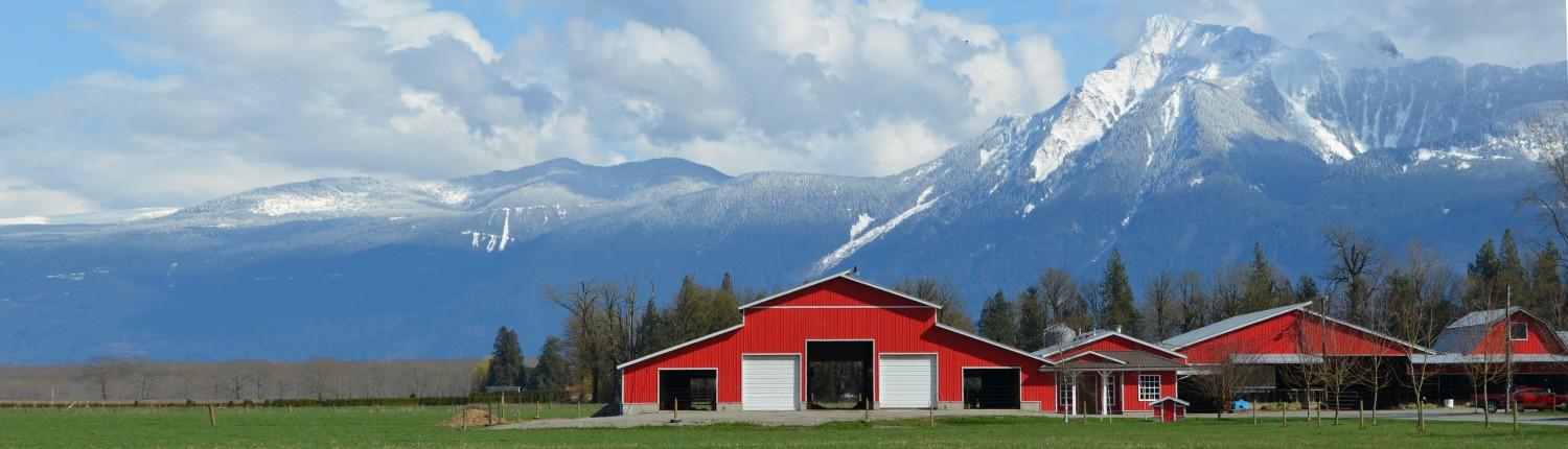 Barns with mountains in background