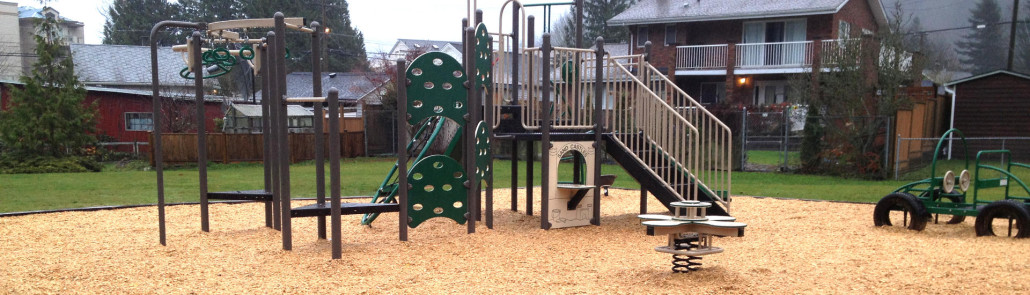 Playground Wood Chips - PlayChips