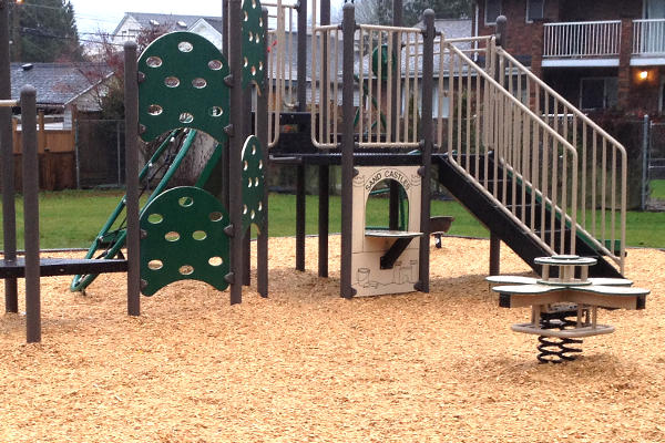 Playground Wood Chips and play structure
