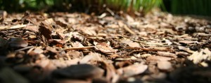 wood chips create a more stable and secure surface than pea gravel