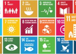Sustainable Development Viability
