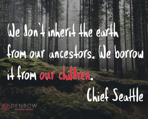 We don't inherit the earth from our ancestors. We borrow it from our children. Chief Seattle