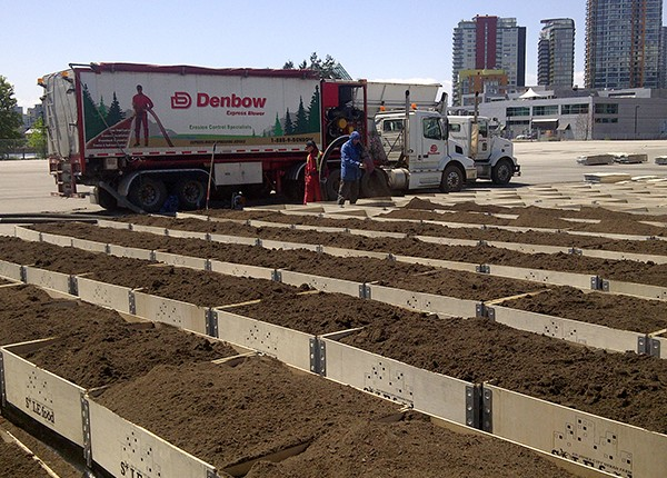 Raised Garden Beds in Vancouver - soil supplied by Denbow