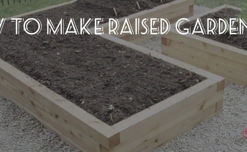 Denbow gives a short into to raised garden beds