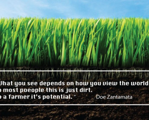 soil is incredibly important for our farming partners