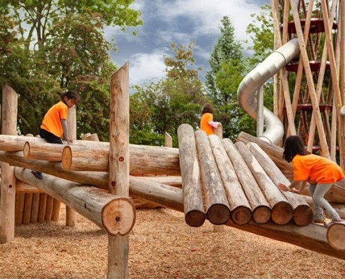 Terra Nova Playground with Wood Chips