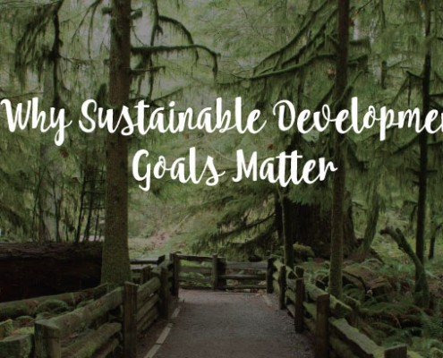 Sustainable development goals matter since it effects most people engaged with the land