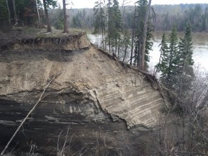 left unchecked erosion of the banks of the fraser river could create disaster