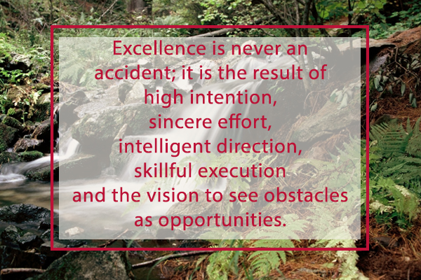 excellence vision opportunities
