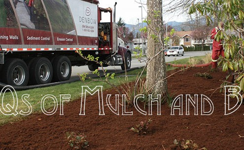 FAQs of Mulch and Bark