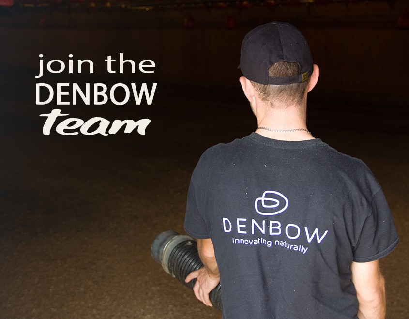 join the denbow team