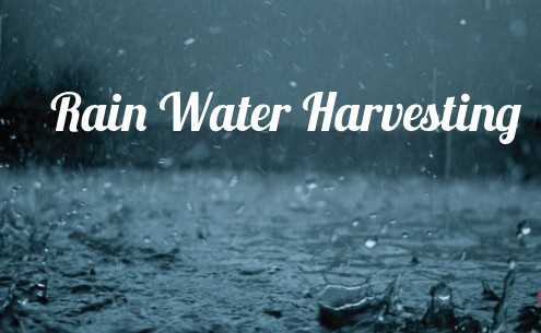 rain water harvesting can help with summer water conservation