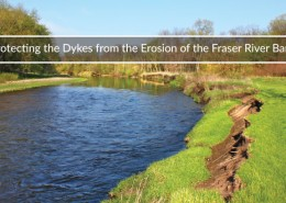 the full history of the dyke erosion safety project in abbotsford bc