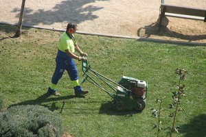 Fall Landscaping Care 6 Steps to Take Right Now- areating a lawn