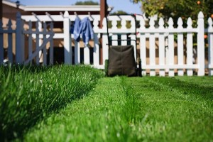 Fall Landscaping Care 6 Steps to Take Right Now-mowing a lawn