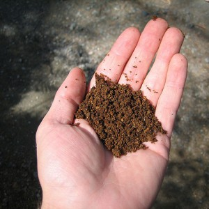 Iron_rich_soil_in_hand