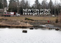 city of surrey newton pond cleanup
