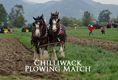 chilliwack plowing match