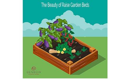 Raised-Garden-Beds-feature