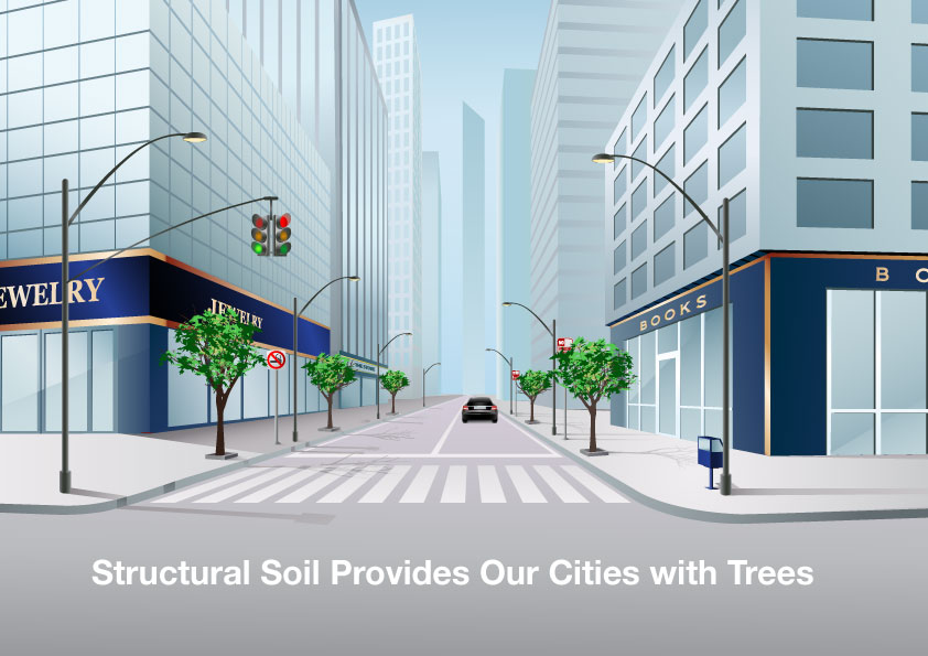 structural-soil-lets-our-cities-have-trees