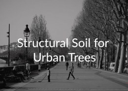 Structural-Soil-for-Urban-Trees