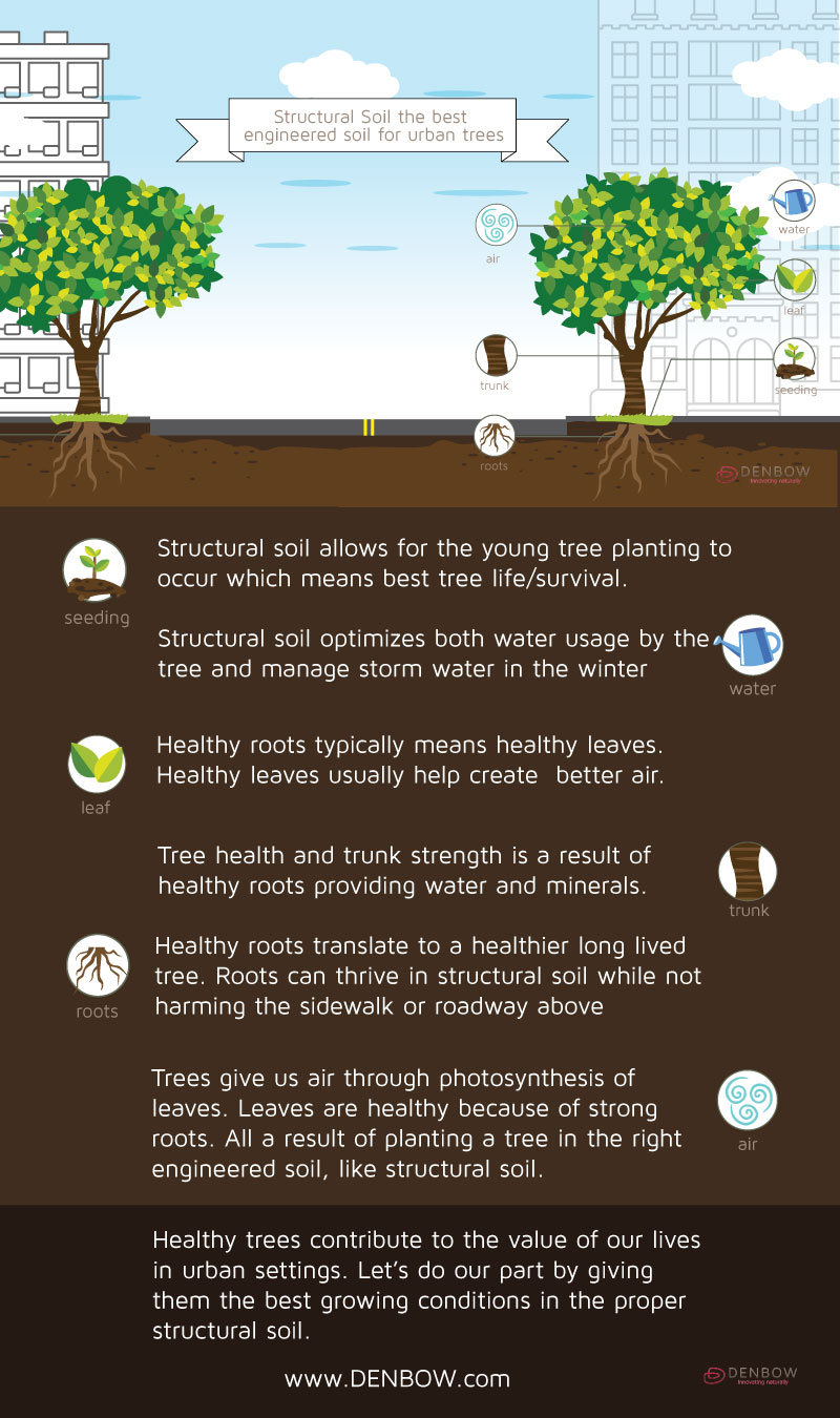 Structural-soil-infographic-final