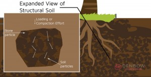 structural-soil-expanded-view