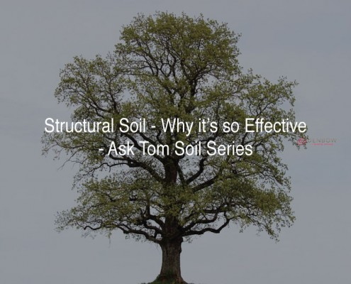 why structural soil is so good for trees
