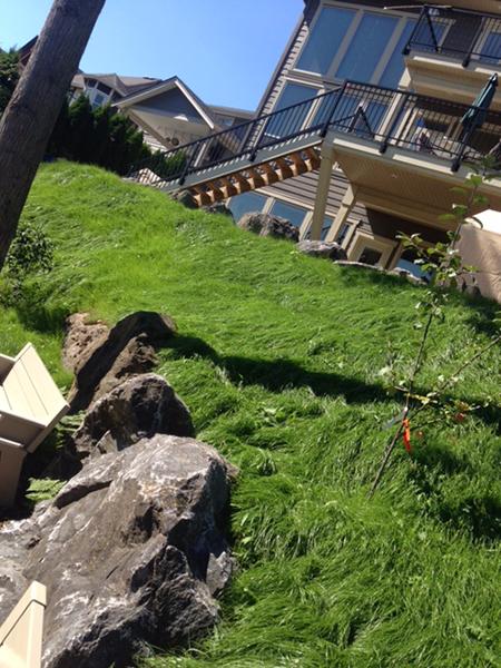 ecoblanket summer seeding