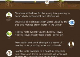 Structural-soil-infographic-final-260x185-o