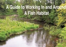 guide-to-fish-habitat
