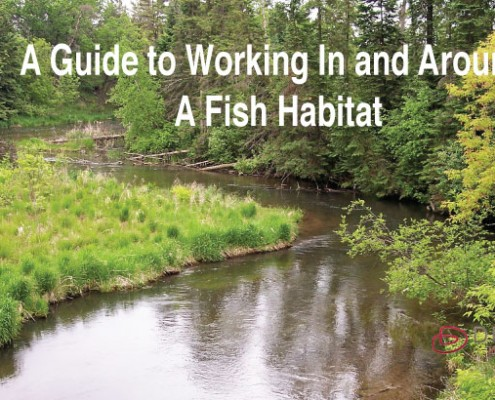 guide-to-fish-habitat