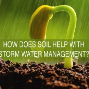 HOW-DOES-SOIL-HELP-WITH-STORM-WATER-MANAGEMENT