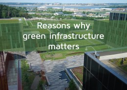 Reasons why green infrastructure matters