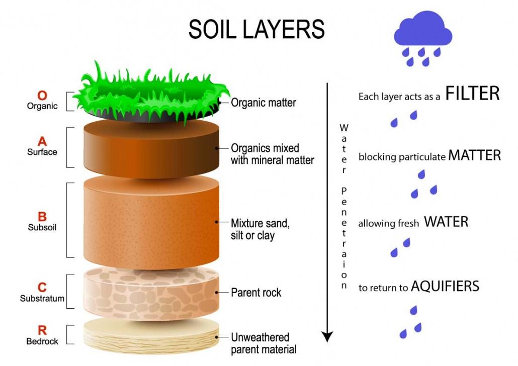 Green Natural Water Filter Organic