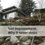 soil improvement